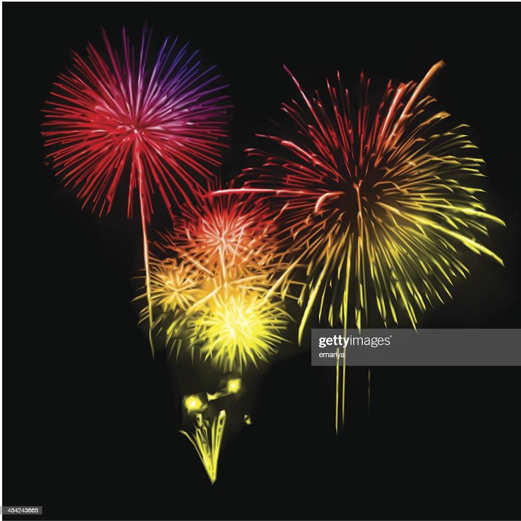 Fireworks in the night sky. Vector : Vector Art