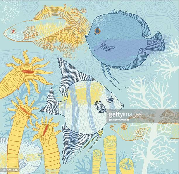fish and corrals - angelfish stock illustrations, clip art, cartoons, & icons