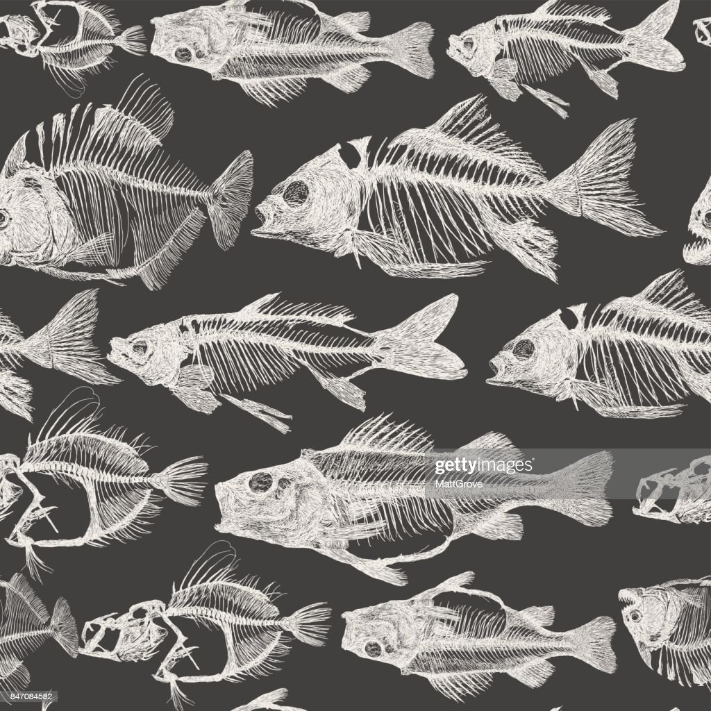 Fish Bone Repeat Pattern : Stock Illustration