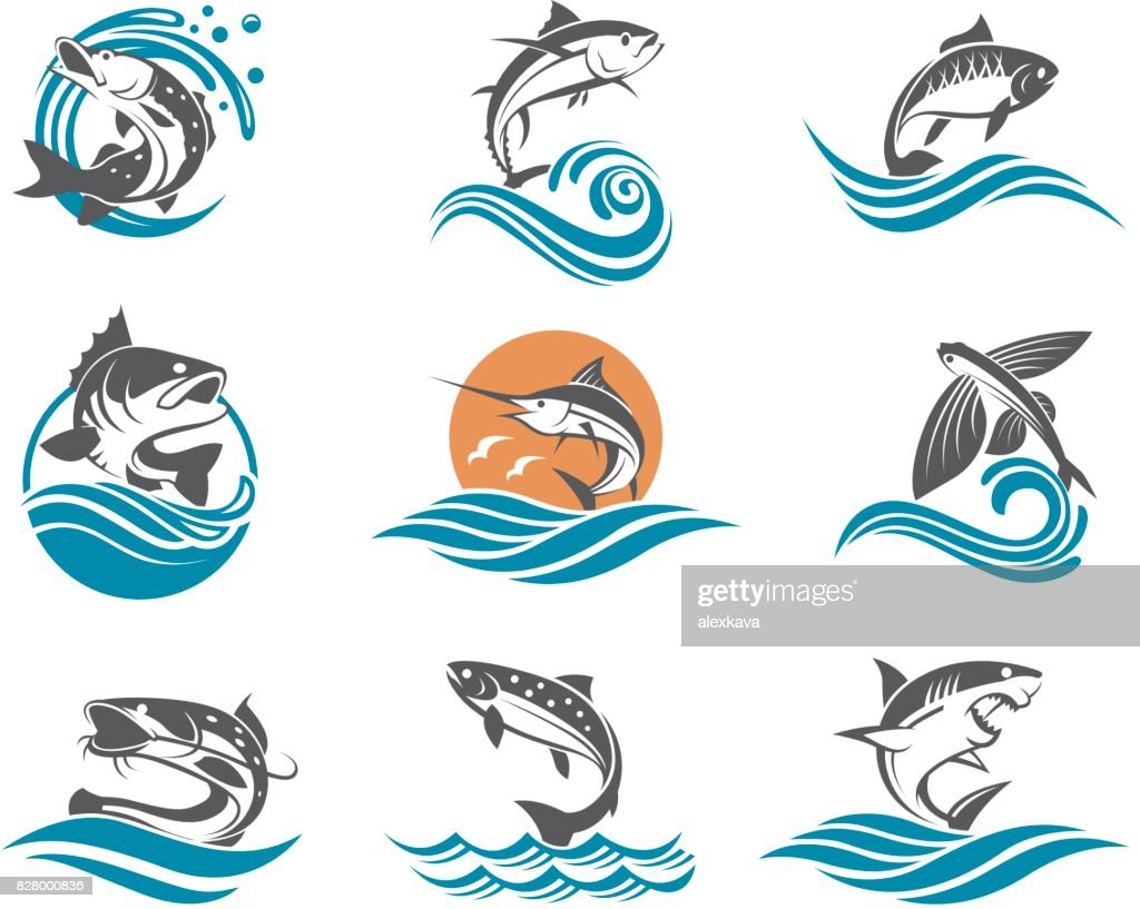 fish illustrations set