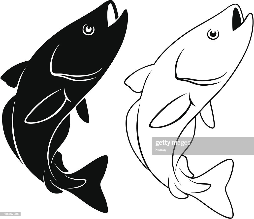 fish pollack