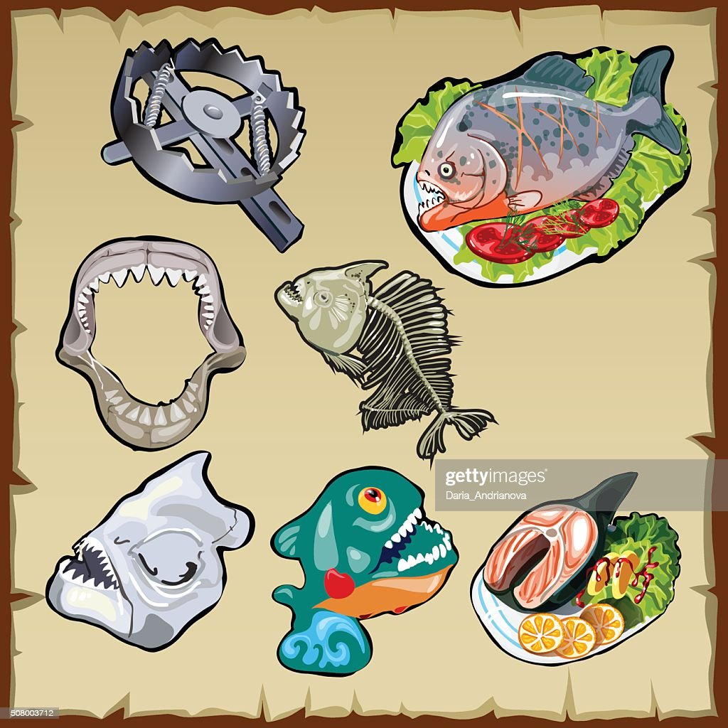 Fish set, traps, jaw and other image of piranha