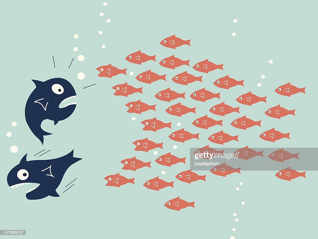Fish teamwork : stock illustration