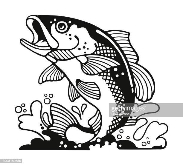 illustrations, cliparts, dessins animés et icônes de poisson - un seul animal