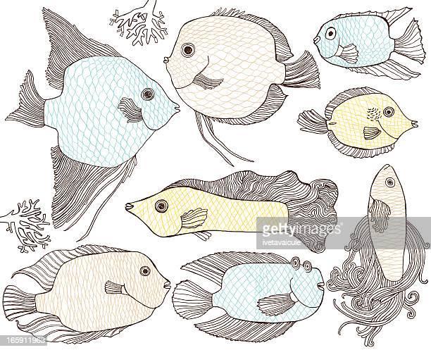 fish - angelfish stock illustrations, clip art, cartoons, & icons