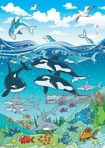fish - anemonefish stock illustrations, clip art, cartoons, & icons