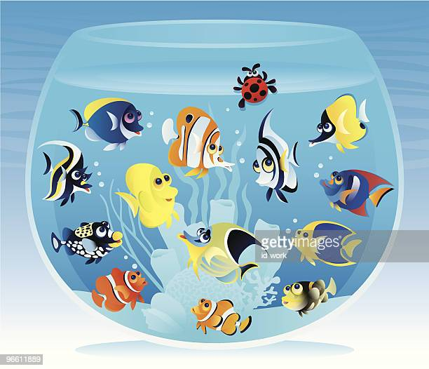 fishbowl with fish - anemonefish stock illustrations, clip art, cartoons, & icons