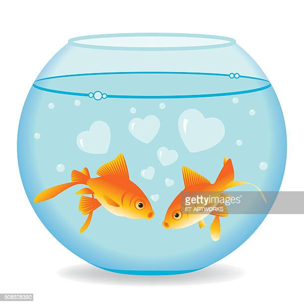 fishes in love - fishbowl stock illustrations, clip art, cartoons, & icons