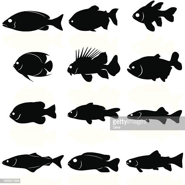 Fishes Silhouettes