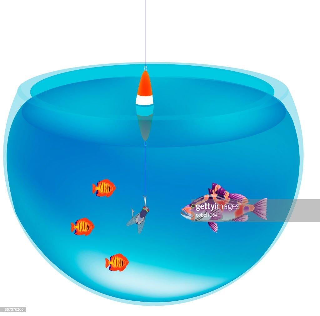Fishing in aquarium