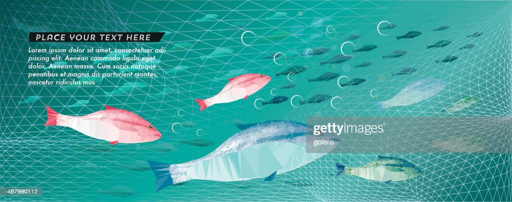 fishing scene with colorful fishes : stock illustration