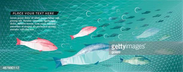 ilustraciones, imágenes clip art, dibujos animados e iconos de stock de escena de pesca con colorido fishes - grupo de animales
