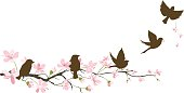 Five Brown Sparrow Silhouettes and Cherry Blossoms Branch
