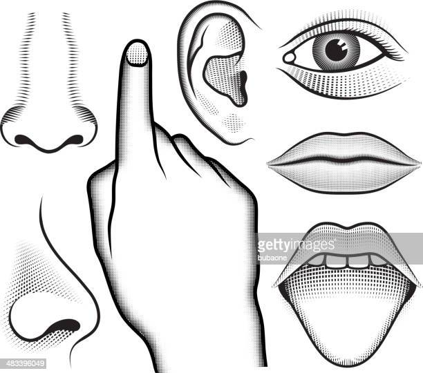 five human senses black & white vector interface icon set - human nose stock illustrations