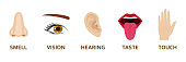 Five human senses icons set. Cartoon design nose, eye, hand, ear and mouth. Vector illustration.