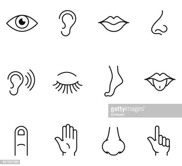 five human senses icons - ear stock illustrations