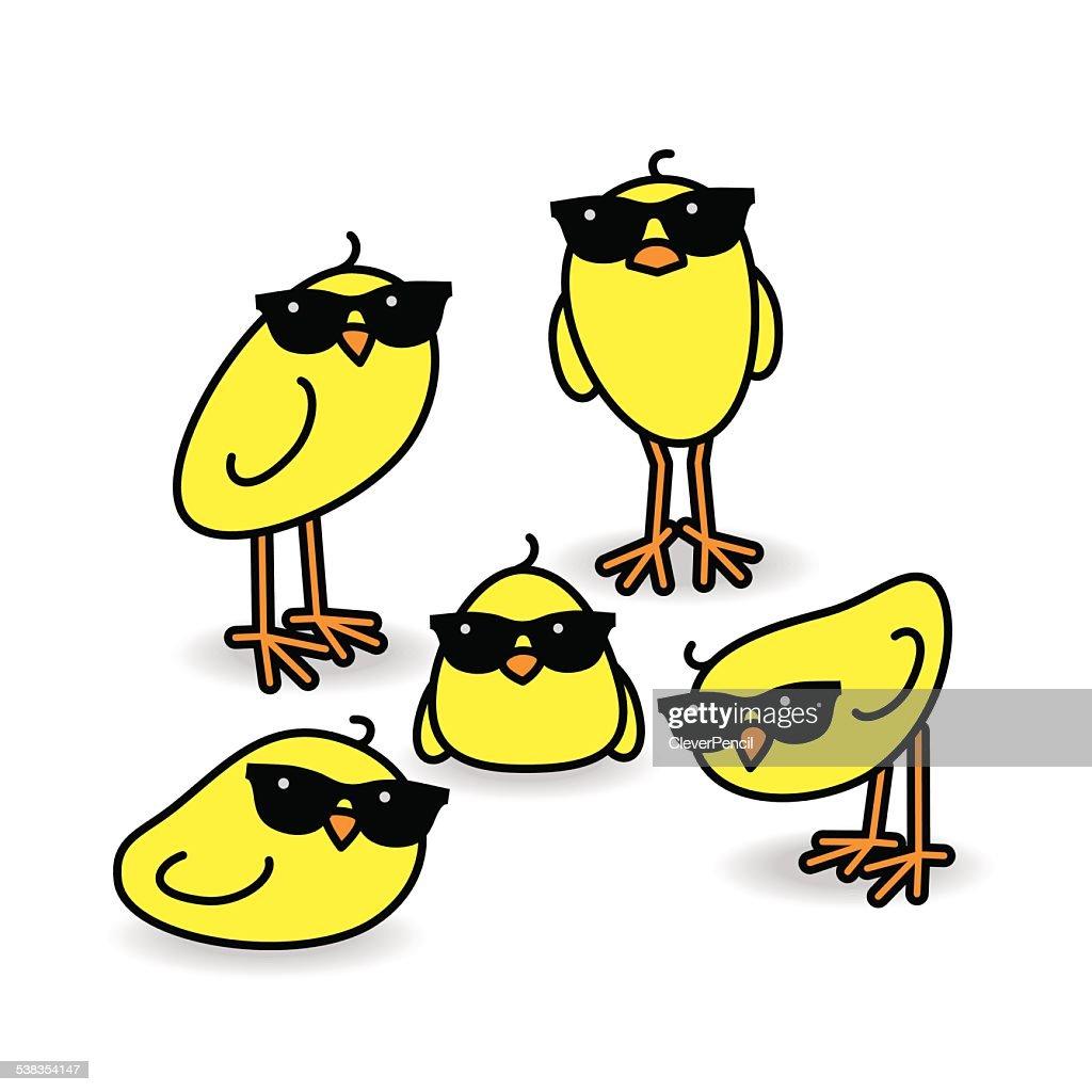 Five Staring Yellow Chicks Wearing Sunglasses