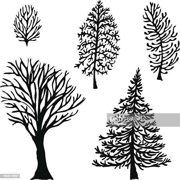 Cinque alberi