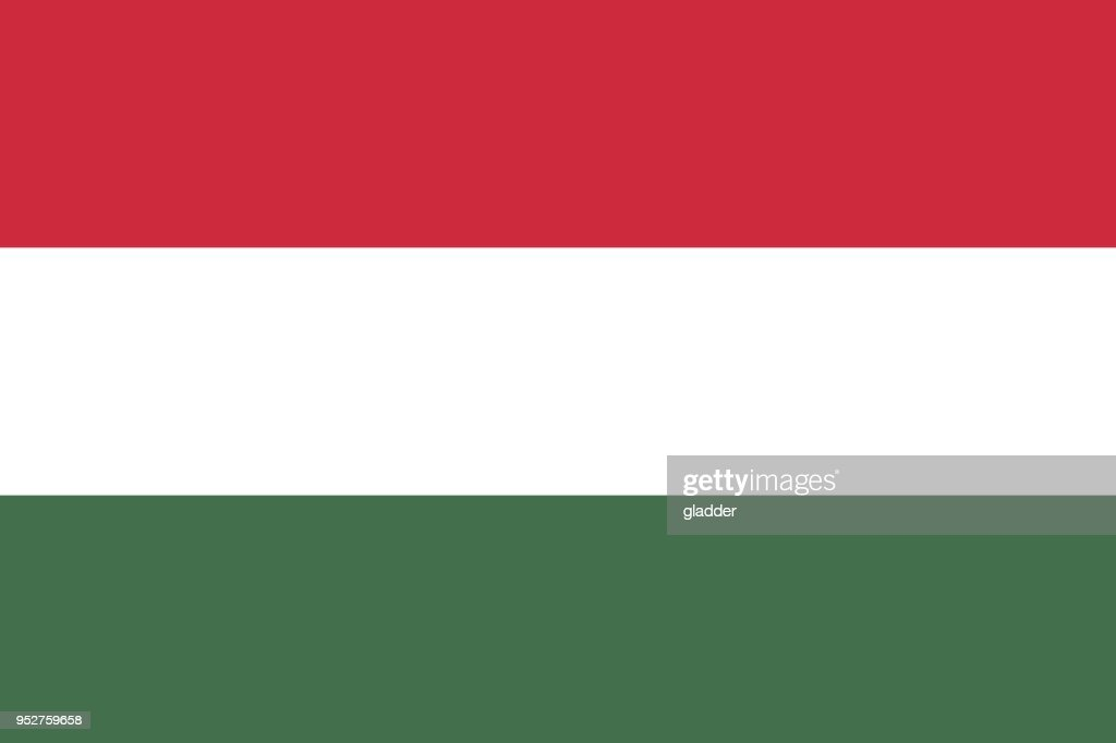 Flag in colors of Hungary, vector image