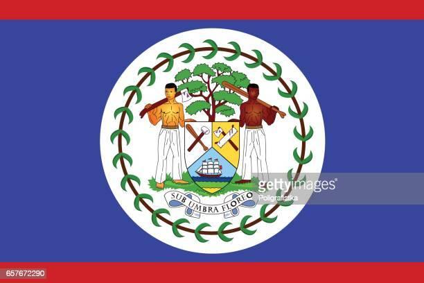 flag of belize - belize stock illustrations