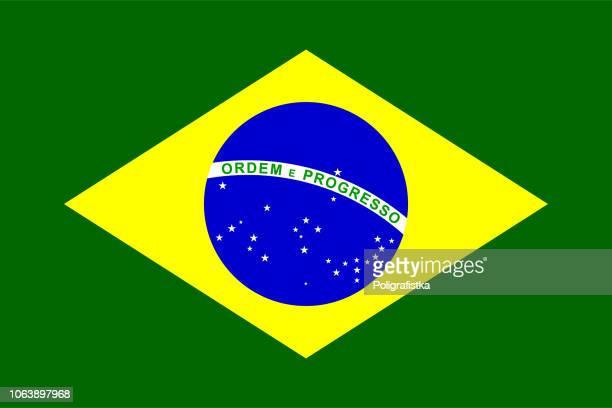 flagge von brasilien - flagge stock-grafiken, -clipart, -cartoons und -symbole