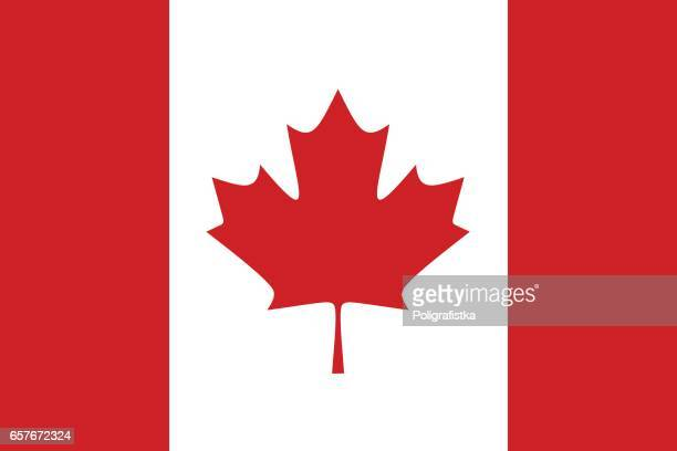 flag of canada - canadian flag stock illustrations