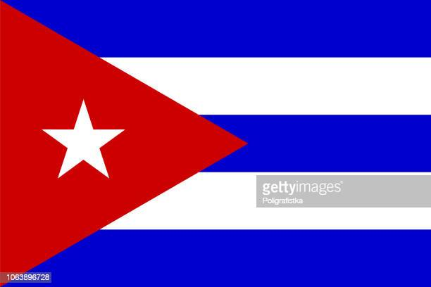flag of cuba - cuban culture stock illustrations, clip art, cartoons, & icons