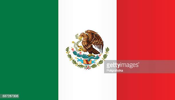 flag of mexico - flag stock illustrations