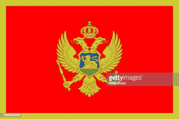 flagge von montenegro - montenegro stock-grafiken, -clipart, -cartoons und -symbole