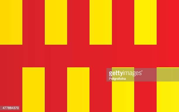 flag of northumberland - northumberland stock illustrations, clip art, cartoons, & icons