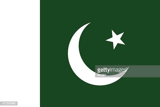 flag of pakistan - pakistan stock illustrations