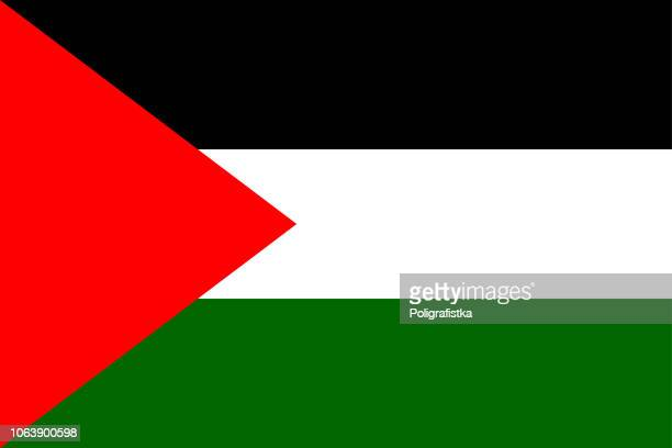 illustrazioni stock, clip art, cartoni animati e icone di tendenza di flag of palestine - cultura palestinese
