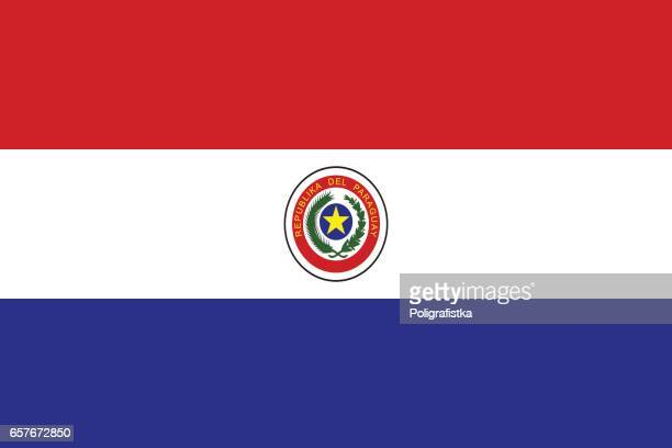 illustrations, cliparts, dessins animés et icônes de drapeau du paraguay - paraguay