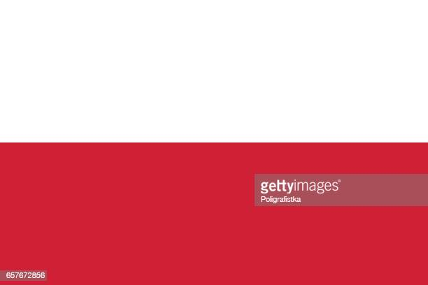 stockillustraties, clipart, cartoons en iconen met vlag van polen - polen