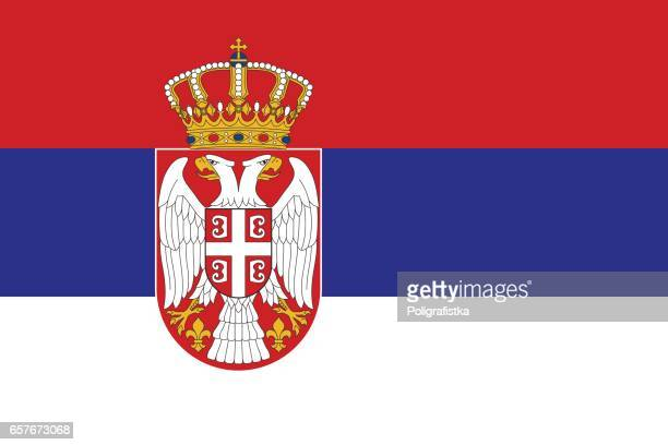 flag of serbia - serbia stock illustrations