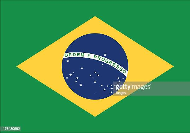 stockillustraties, clipart, cartoons en iconen met flag of the brazil - brazilië