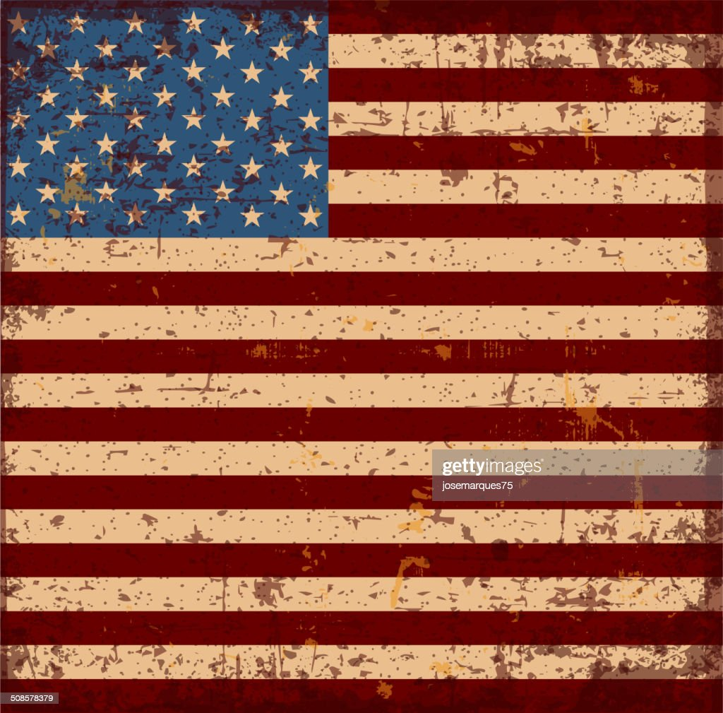 Flag of the USA : Vector Art