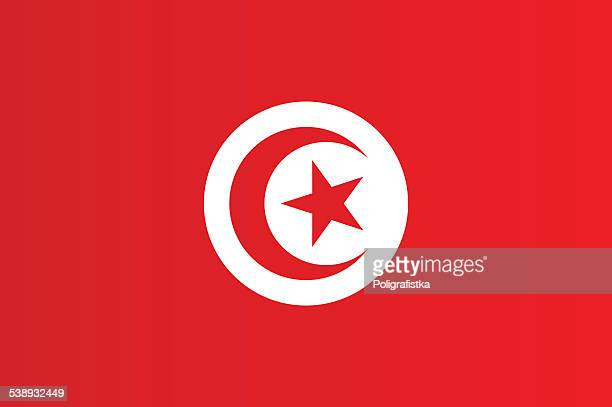 flag of tunisia - tunisia stock illustrations