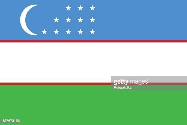 stockillustraties, clipart, cartoons en iconen met vlag van oezbekistan - oezbekistan