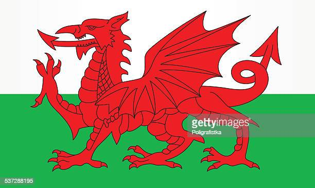 flag of wales - wales stock illustrations