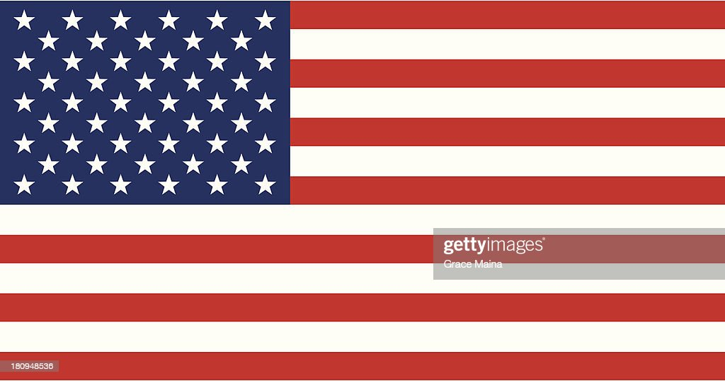 USA flag - VECTOR