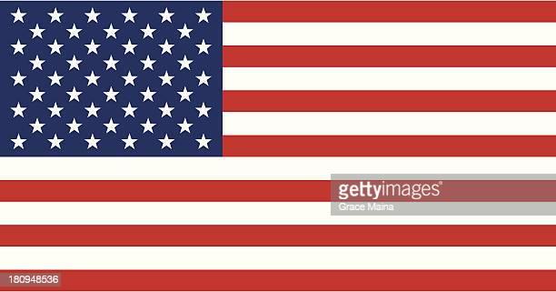 USA flag - VECTOR