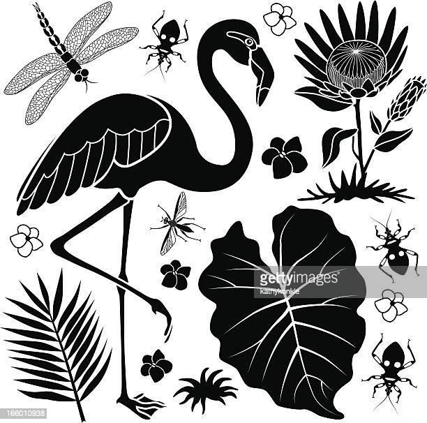 flamingo and taro leaf - flamingo stock illustrations, clip art, cartoons, & icons