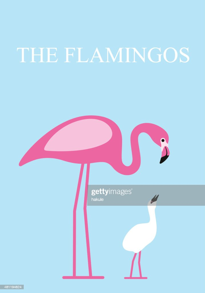 Flamingo feed its baby , Vector
