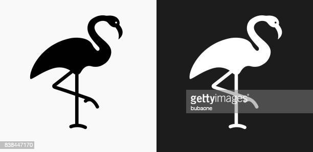 flamingo icon on black and white vector backgrounds - flamingo stock illustrations, clip art, cartoons, & icons