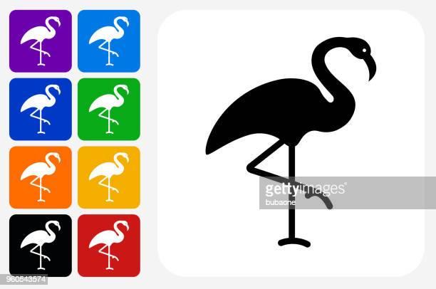 flamingo icon square button set - flamingo stock illustrations, clip art, cartoons, & icons