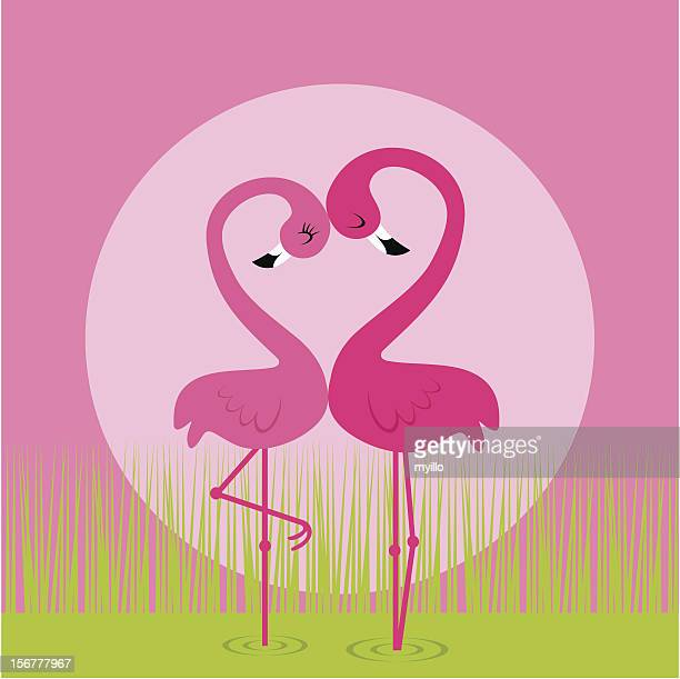 flamingo love - flamingo stock illustrations, clip art, cartoons, & icons