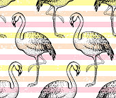 Flamingo seamless pattern, hand drawn doodle texture. Textile print for apparel. Handmade exotic pink bird, fashion grunge stripes. Handdrawn vector illustration isolated on white background
