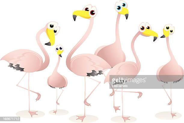 Flamingos Cartoon