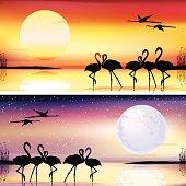 Flamingos silhouettes illustrations set